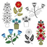 Flowers set. Coloured and contour Royalty Free Stock Photography