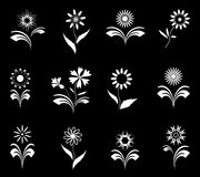 Flowers set, design elements. Royalty Free Stock Photos