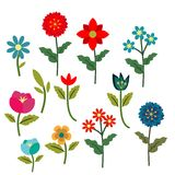 Flowers set. Different summer decorative flowers collection Royalty Free Stock Photography