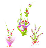 Flowers Set. Grass With Flowers Set, Vector Illustration Stock Photos
