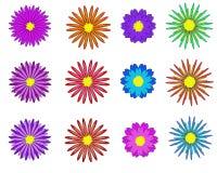 Flowers set - Illustration Flowers stock illustration