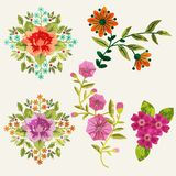 Flowers set. With paint imitation overlay, isolated elements Royalty Free Stock Images