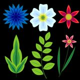 Flowers set. Various blossom and foliage Royalty Free Stock Photos
