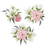 Flowers set of watercolor hellebore and peonies. Bouquet of flowers. Flowers set of watercolor hellebore and peonies Royalty Free Stock Photography