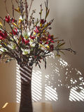Flowers shadow shapes and lines. Flowers in vase shadows shapes and lines from window blinds stock image