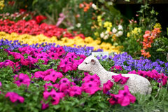 Flowers with sheep statue Royalty Free Stock Image