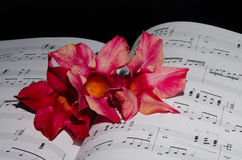 Flowers on sheet music Royalty Free Stock Image