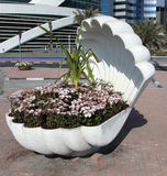 Flowers in the shell, Doha Royalty Free Stock Photo