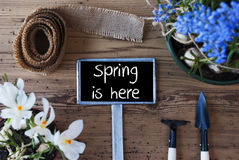 Flowers, Sign, Text Spring Is Here Royalty Free Stock Photo