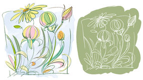 Flowers Sketch Stock Photos