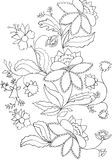 Flowers sketch, decoration Stock Photography