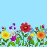Flowers and sky Stock Image