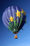 Flowers in the sky. Hot air balloon fest stock image