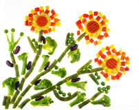 Flowers from slices of vegetables Stock Images