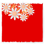 Flowers. Slip of paper and different flowers Royalty Free Stock Photos