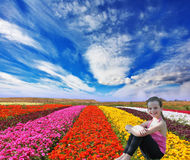 Among the flowers smiling little girl Stock Images