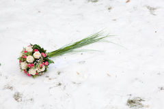 Flowers on the snow Royalty Free Stock Image