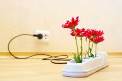 Flowers in socket Stock Images