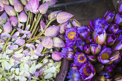 Flowers sold to be used as offerings in front of the Temple of t Royalty Free Stock Image