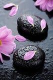 flowers spa πέτρες Στοκ φωτογραφία με δικαίωμα ελεύθερης χρήσης