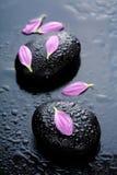 flowers spa πέτρες Στοκ Φωτογραφίες