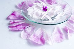 Flowers spa. Spa petal flower drop freshness vessel water Royalty Free Stock Image