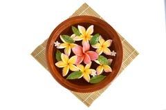 Flowers spa tub, Frangipani flowers spa tub. Royalty Free Stock Photography