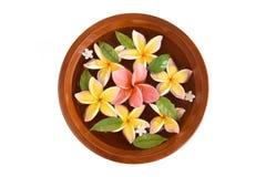 Flowers spa tub, Frangipani flowers spa tub. Stock Images
