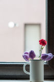 Flowers in the spigot Stock Image