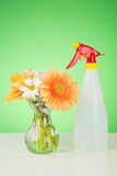 Flowers and a Spray Bottle Stock Photography