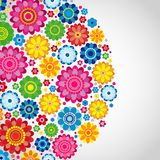 Flowers spring design on a white  background, floral. Vector illustration Royalty Free Stock Image