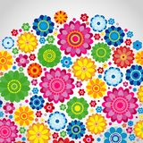 Flowers spring design on a white  background, floral vector. Illustration Stock Images