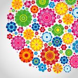 Flowers spring design on a white  background, floral vector. Illustration Stock Photography