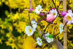 Flowers, spring. Festive spring colored flowers. Spring, flowers and surprise Royalty Free Stock Images
