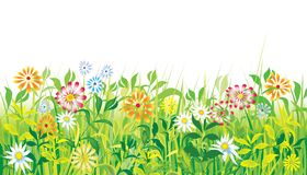 Flowers_spring_meadow Royalty Free Stock Images