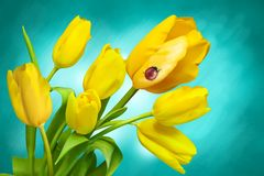 Flowers, Spring, Tulips, Plant Royalty Free Stock Image