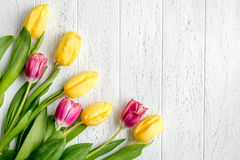 Flowers spring tulips top view on wooden background mockup Royalty Free Stock Images