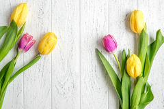 Flowers spring tulips top view on wooden background mockup Stock Photos