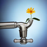 Flowers sprouted in the metal tap Royalty Free Stock Photography