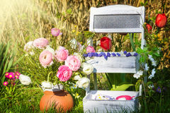 Flowers stairs  in garden Royalty Free Stock Images