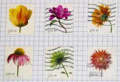 Flowers stamps Royalty Free Stock Photography