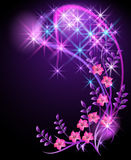 Flowers and stars Royalty Free Stock Photos