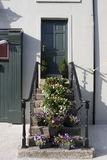 Flowers on the steps of an Irish doorway Royalty Free Stock Photos
