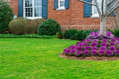 Flowers, stones and nicely trimmed grass in front of the house, front yard. Wintar in Brooklyn NY US stock photo