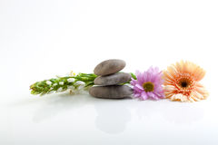 Flowers and stones - spa theme Stock Photography