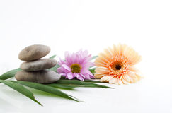 Flowers and stones - spa theme Royalty Free Stock Photography