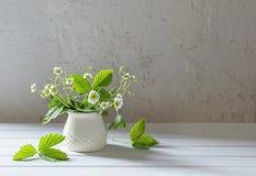 Flowers of strawberry in vase Stock Photo