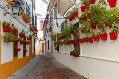 Flowers on street Cordoba, Andalusia, Spain Royalty Free Stock Photos