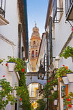 Flowers street at Cordoba Spain Stock Photos