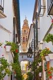 Flowers street at Cordoba Spain Stock Photos